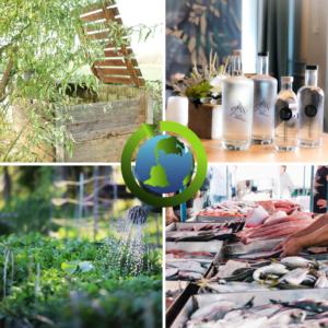4 photos de compost, bouteilles ioz, potager et marché aux poissons